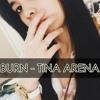 Burn - Tina Arena (Short Cover)