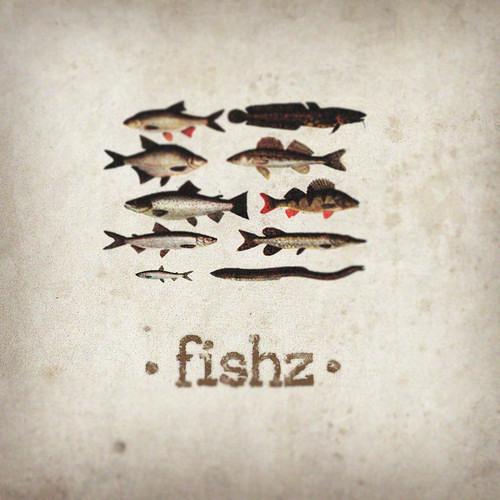 Fishz - Stargazing Danio