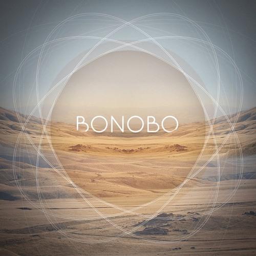Maya Jane Coles : Something In The Air - Bonobo Remix