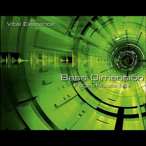 Bass Dimension Fidget House Mix - Mediafire DL in Description