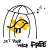 Singing Practice Techniques