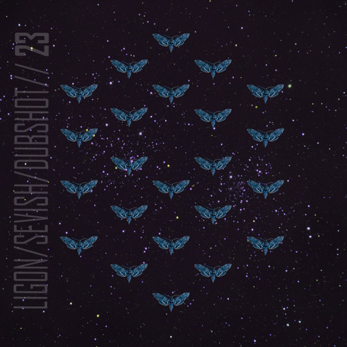 Ligon / Sevish / Dubshot ~ 23 (Dubbhism Deluxe)
