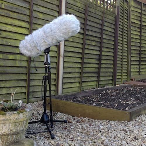 Garden Audio experiment - Track 1
