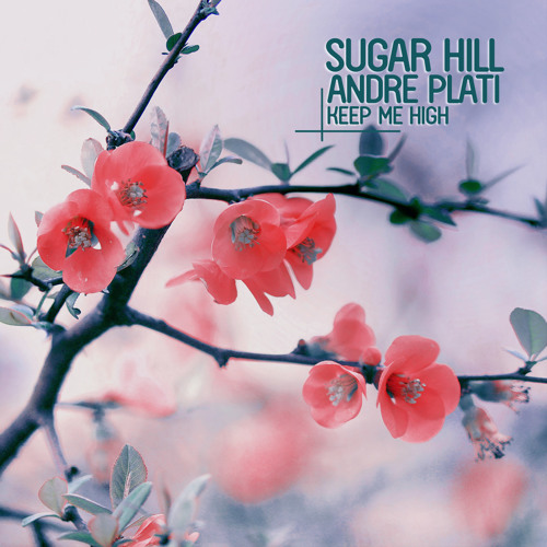 Sugar Hill & Andre Plati - Keep Me High (Me & My Toothbrush Remix)