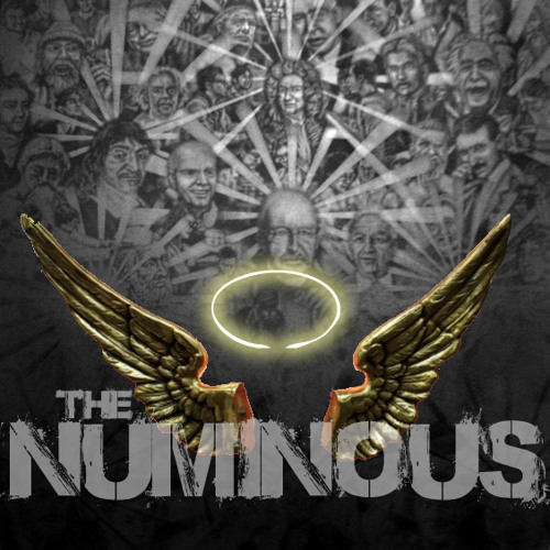 Soul Immersed In A Fool - the NUMINOUS ft Devy Dev Dev & 66notes