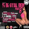 FI DI GYAL DEM PART 3 | MIXTAPE 2014 | SKAVENGA SOUND