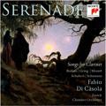 15 Brahms Feldeinsamkeit