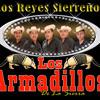 PRESENTANDO SU NUEVO MATERIAL DISCO GRAFICO LOS ARMADILLOS DE LA SIERRA...A...O...S...2014