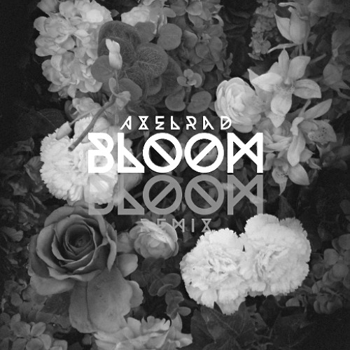 The Paper Kites - Bloom (AXELRAD Remix)