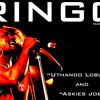 RINGO Madlingozi - Askies Joe