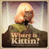 Marc Houle & Miss Kittin - Where is Kittin (Dubfire Remix)
