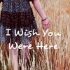 avril lavigne - i wish you were here