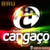[Faixa Texte] • Do BAU Do Forró Cangaco • So As Melhores - CALANGO TANGO - @RonaldoCdsMoral Portada del disco