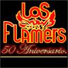 Juana la Bailadora - Los Flamers Portada del disco