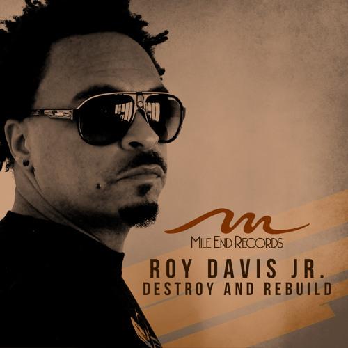 Roy Davis Jr. - My Nation ft. Terry Dexter