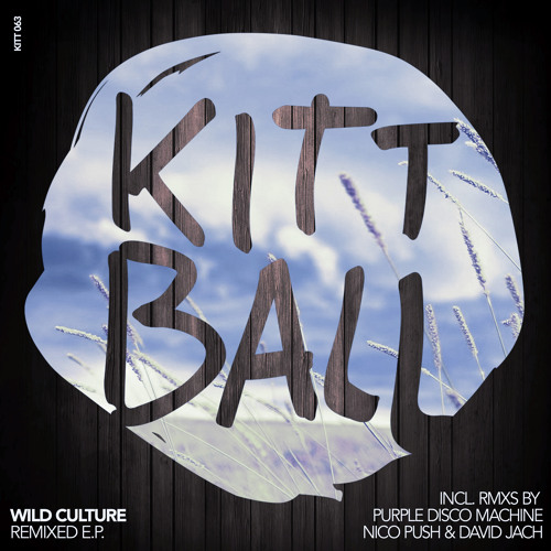 Wild Culture - For Everything (David Jach Remix)