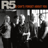 R5 - (I Cant) Forget About You (Radio Edit)