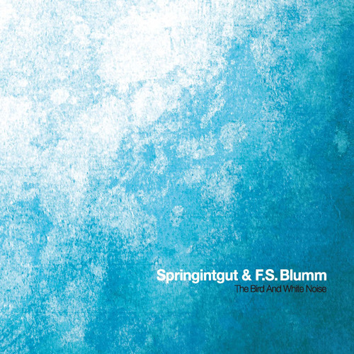 Springintgut & F.S. Blumm / The Bird And White Noise (Album Sampler)