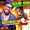 Back Pocket Rag - REMIX - Xyclone Ft.Beenie Man & Cee Gee [VPAL Music / RSQTHP Music 2014]