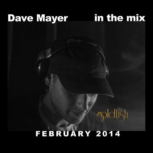 Dave Mayer Live @ Goldfish, Sydney (Australia) February 2014