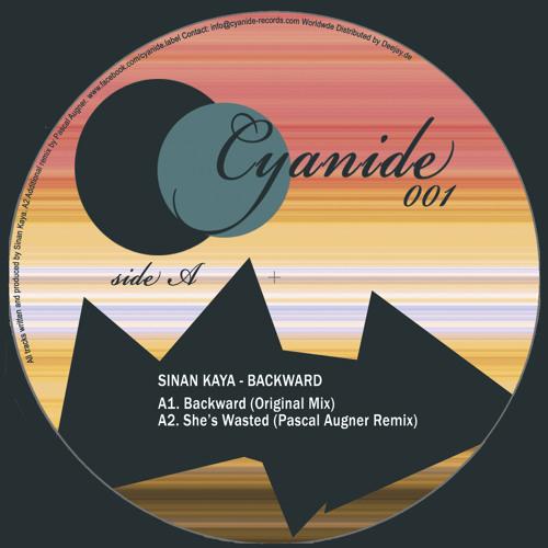 Sinan Kaya - She's Wasted (Pascal Augner Remix)