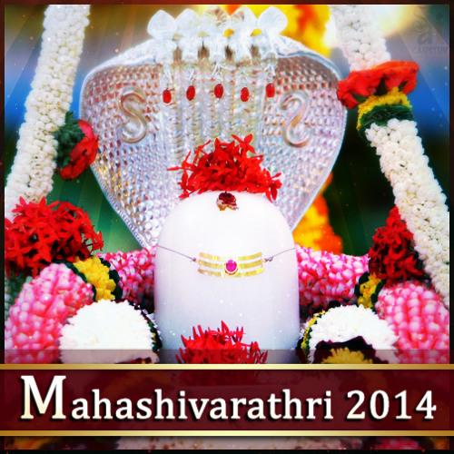 Shankara Shiva Nataraj