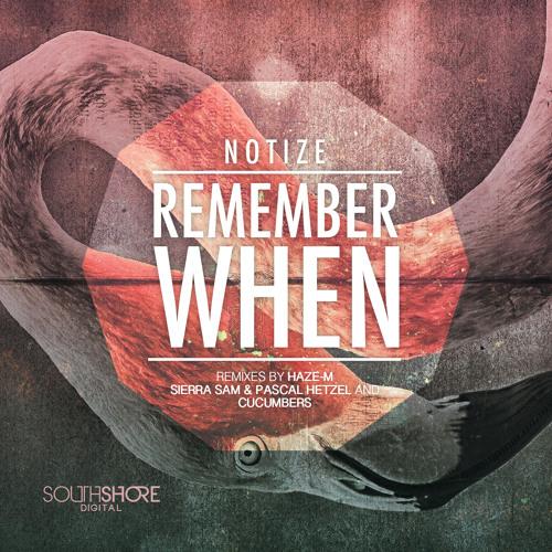 3.NOTIZE - Remember When ( Haze-M Remix ) PREVIEW