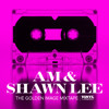 AM & Shawn Lee - Golden Image Mixtape