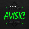 Public Nightlife Vol. 3