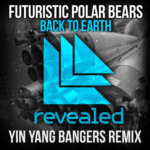 Back To Earth (Yin Yang Bangers Remix)