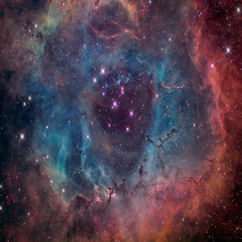 Rossetta Nebula