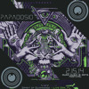 Papadosio  -  2.15.14 - Live Oak, FL - Improbability Blotter w/ Chuck Jones (Dopapod)