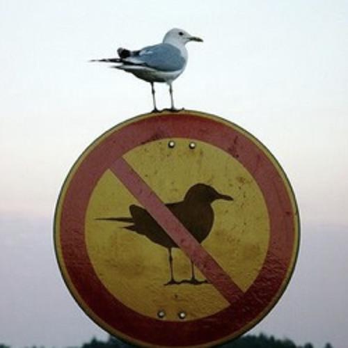Don´t Break The Rule