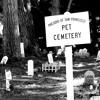 Pet Cemetery (The Ramones Cover)
