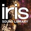 iZotope Iris: Factory Library Keys Examples