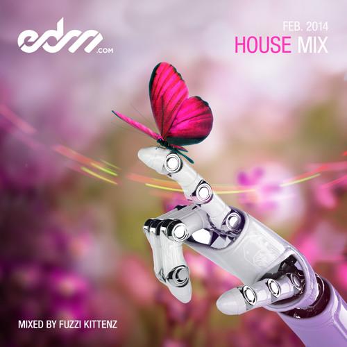 EDM.com House Mix February 2014 - Mixed by Fuzzi Kittenz