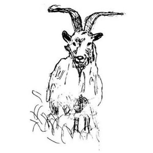 Devaney's Goat LIVE (2009-2010)