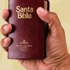 Proverbios - La Santa Biblia, Reina Valera, Audio; Mp3