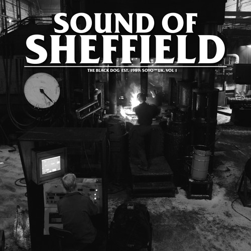 [dustv039] Sound Of Sheffield Vol. 01 by The Black Dog