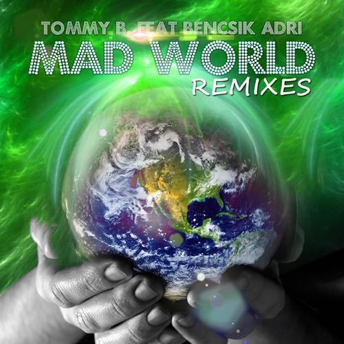Mad World 2014 (Iron & Shy Remix DEMO)