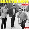 Beastie Boys - Sabotage (FXN Rmx)