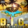Narkatta - B.I.G. Spring Break Mix [for www.ethezine.com*]