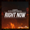Visionaire & Delivio Reavon & Aaron Gill - Right Now [FREE DOWNLOAD]