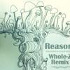 Reason (Whole-Z Remix) - feat. Noah Kahan
