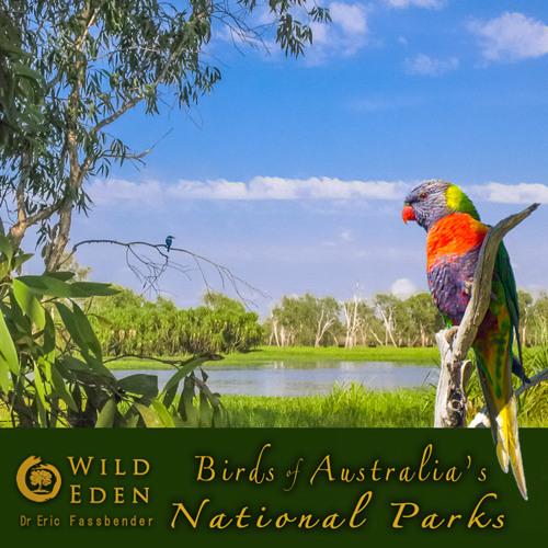 Wilpena Pound, Flinders Ranges National Park, South Australia