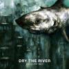 Download Dry The River - Zaytoun Theme Mp3
