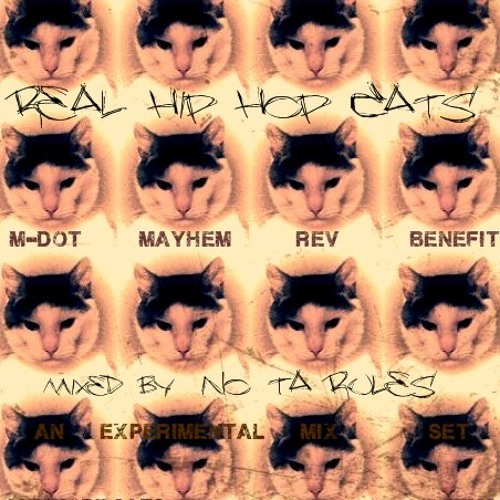 EMS  Real Hip Hop Cats mix