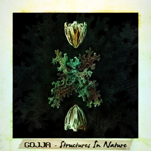 GOJJA - Structures In Nature