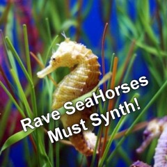 Rave Sea Horses Must Synth!