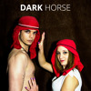 Dark Horse - Katy Perry - Flute cover - MartimOnFire - Download available